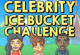 Lösung Ice Bucket Challenge