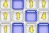 Well Sudoku