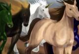 Lösung Pferderennen 2