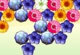 Lösung Flower Power 2