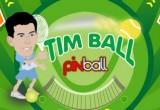 Lösung Timball Pinball