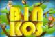 Lösung Binkos