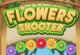 Blumen Bubble Shooter