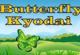 Lösung Butterfly Kyodai