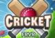 Lösung Cricket