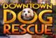 Dog Rescue Wimmelbild