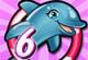 Dolphin Show 6