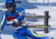 Lösung Downhill Ski