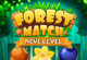 Lösung Forest Match