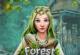 Geheimnisse des Waldes