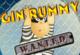 Lösung Gin Rummy