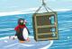 Lösung Go Go Penguin