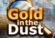 Lösung Gold im Staub