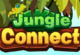 Lösung Jungle Connect