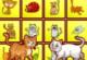 Katzen Unterschiede finden