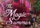 Magic Summer Wimmelbild
