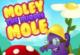 Molly The Purple Mole