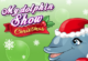 Dolphin Show Christmas Edition