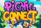 Lösung Picnic Connect