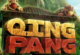 Lösung Qing Pang