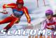 Lösung Slalom Ski Simulator