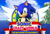 Lösung Sonic Crazy World