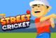 Straßen Cricket