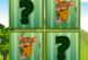 Lösung Tier Kartenspiel