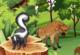 Lösung Tierpaare finden