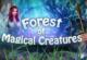 Wald der Kreaturen