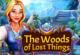 Wald der verloren Dinge